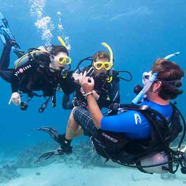 PADI Divemaster - Redsea-Divers - the better way to dive