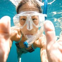 Snorkeling from the boat or nondiver
